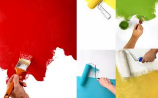 Как покрасить стены?